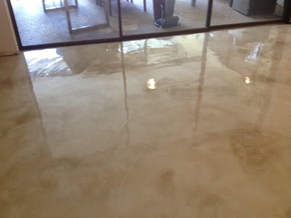 Acid staining concrete temple terrace florida fl for How to deep clean concrete floors